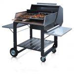 Barbecue a gás: churrascos saudáveis e sem fumo!